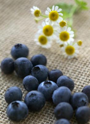 10 'siêu thực phẩm' cho sức khỏe bé - Tin180.com (Ảnh 6)