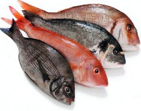 Hãy cẩn thận hơn khi chế biến món cá cho bé