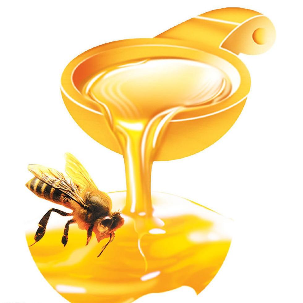 Mật ong mang lại nhiều lợi ích cho thai phụ và thai nhi.