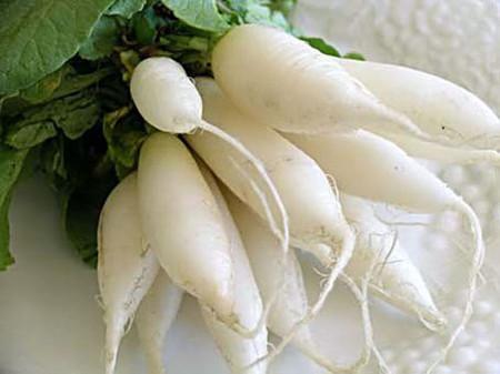 Củ cải có thể được sử dụng như một vị thuốc