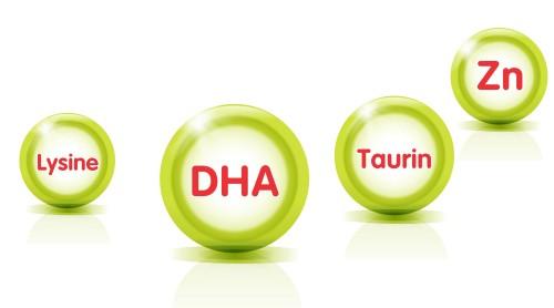 Kẽm, Omega 3 và Taurine cần thiết cho sự phát triển toàn diện của trẻ mầm non