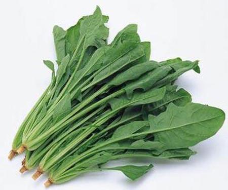 Trong cải bó xôi có chứa lượng sắt và vitamin K dồi dào
