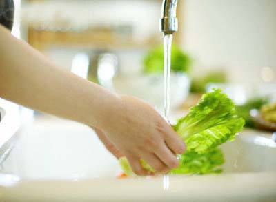 Woman Washing Lettuce