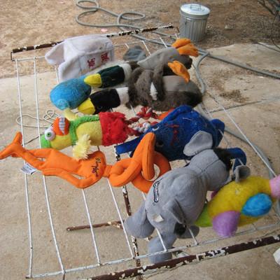 Bạn hãy cùng bé yêu làm sạch đồ chơi của bé mỗi tháng.