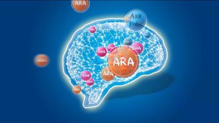 Bổ sung DHA và dưỡng chất cho trí não.