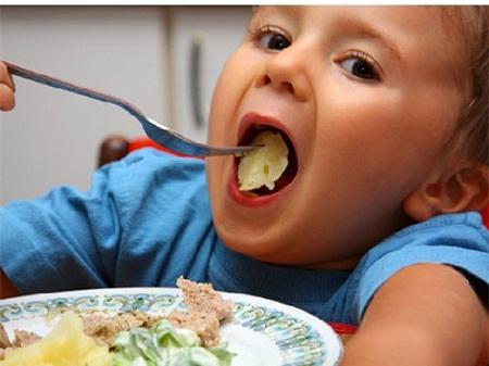 Cháu chỉ ăn cơm không, nhưng cũng chỉ được vài miếng nhỏ, không chịu ăn thịt, cá, tôm...